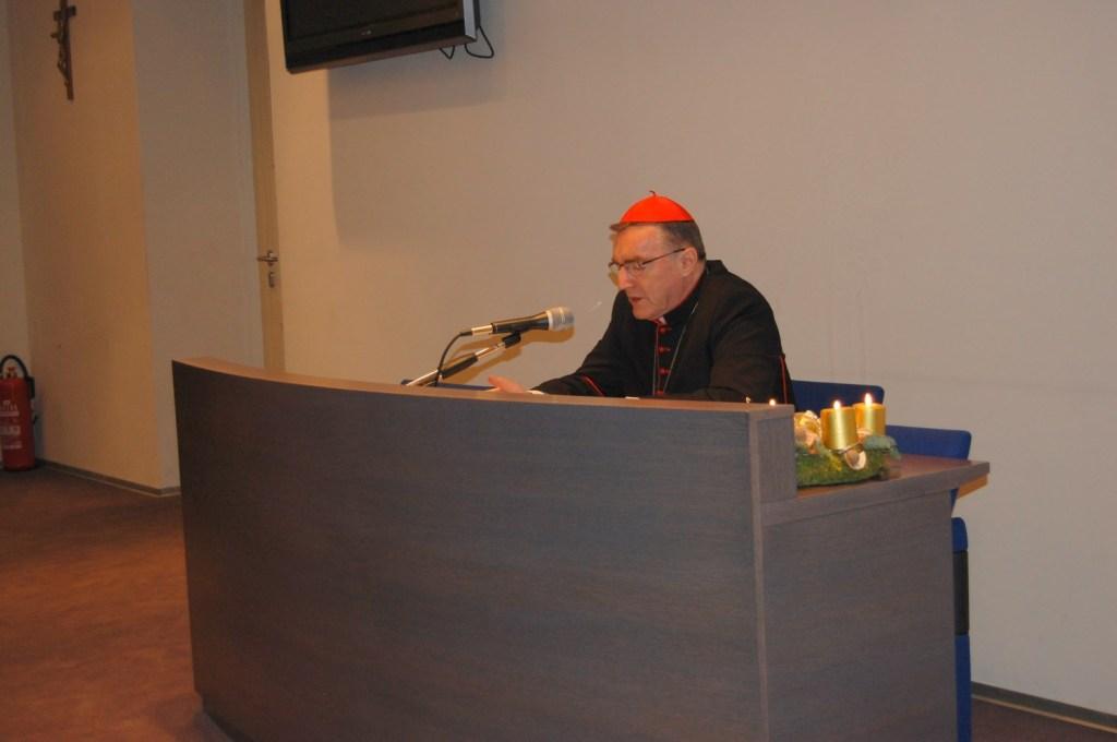 Kardinal sinoda o obitelji (7)